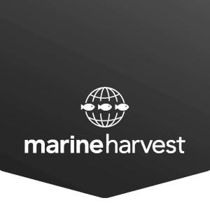 MarineHarvest LogoFishscale Black